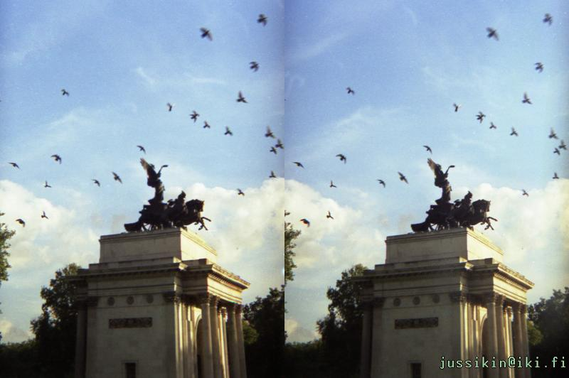 Birds Over Constitution Arch